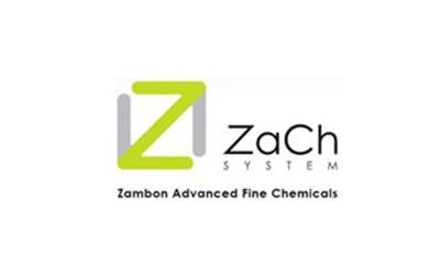 logo zach system